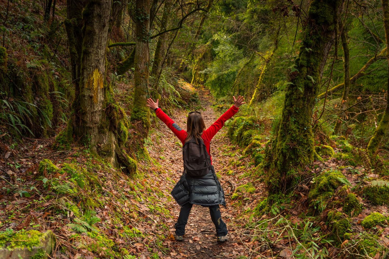 Camino de SAntiago, Cudillero, Asturias, Otoño, Asturias a lo grandee